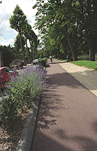 Bike path along Marne meander